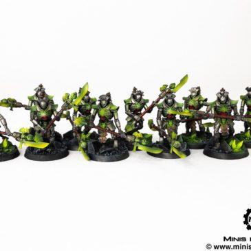 40k – Necron Army – Triarch Praetorians