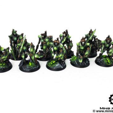 40k – Necron Army – Necron Lychguards
